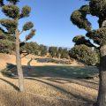 【感謝】ポイントもらって藤岡ゴルフクラブに行ってきました!